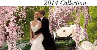 St. Patrick 2014 collection, Pronovias, Perfect Wedding magazine, Fashion, Bridal Gowns