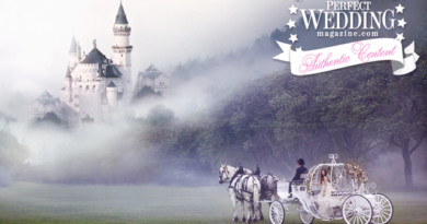 Fairytale Fantasy Castle+Carriage